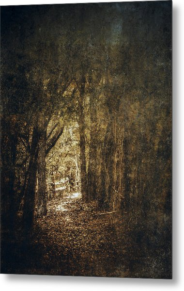 The Way Out Metal Print