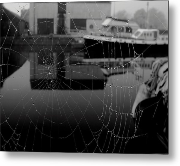 The Web Metal Print by Peter Skelton