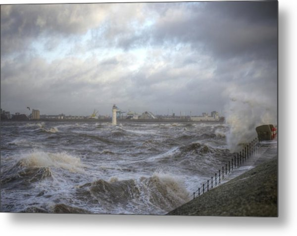 The Wild Mersey Metal Print