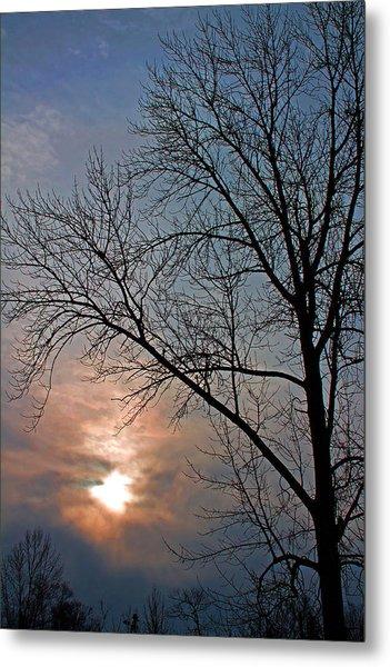 The Winter Skies Metal Print by Rhonda Humphreys