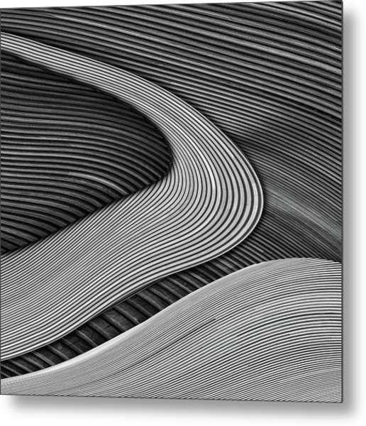 The Wood Project IIi - Zen Garden Metal Print