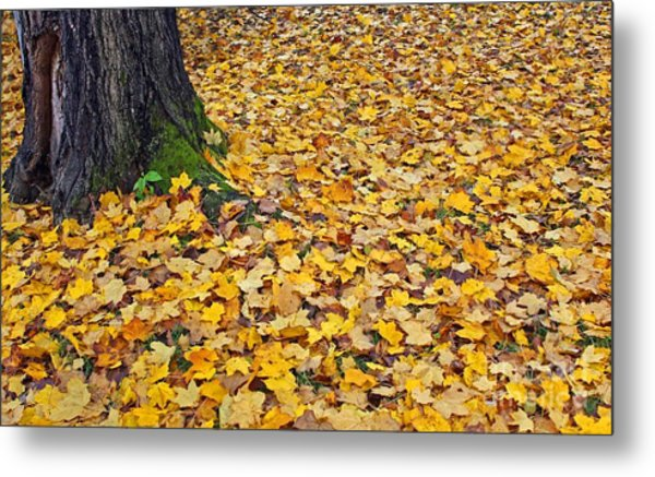 They All Fall Down Metal Print