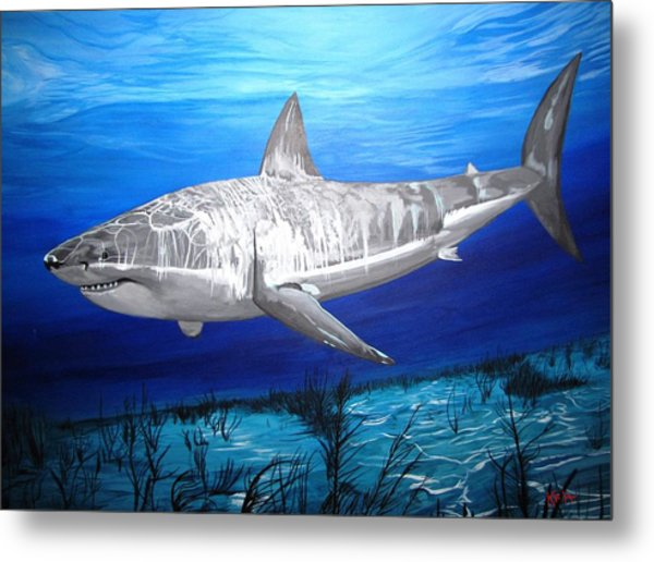 This Is A Shark Metal Print