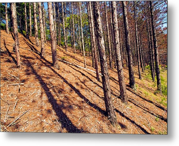 This Is A Steep Hill For Old Legs Metal Print