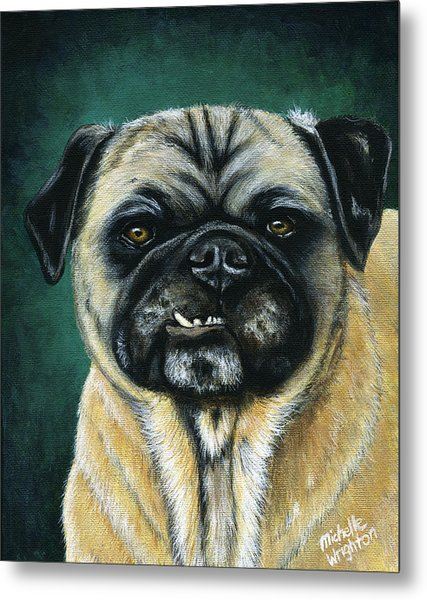 This Is My Happy Face - Pug Dog Painting Metal Print