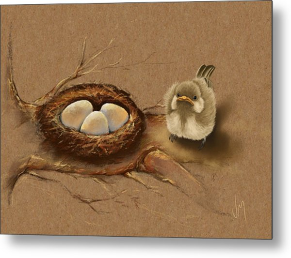 This Is My Nest? Metal Print