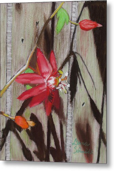 This Is My Passion - Flowers Metal Print
