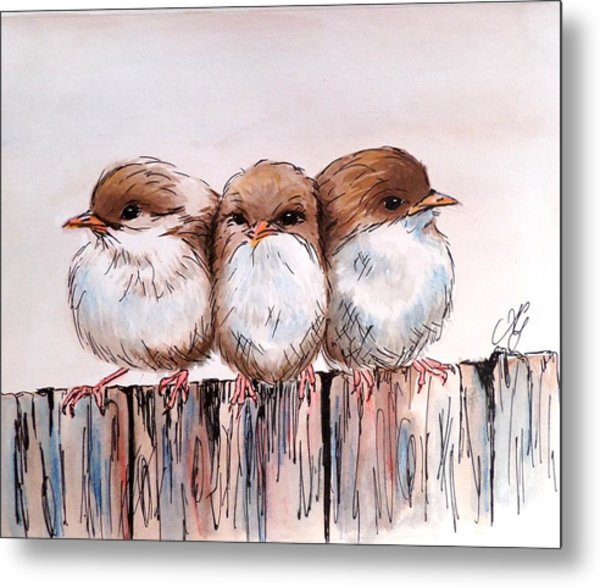 Three Baby Fairy Wrens Metal Print