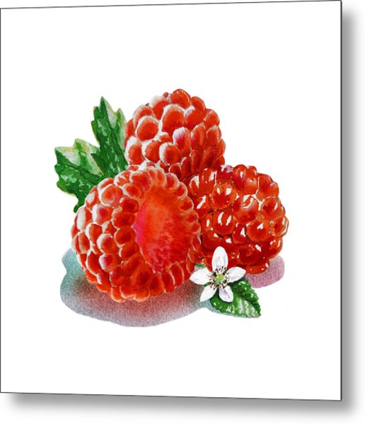Three Happy Raspberries Metal Print