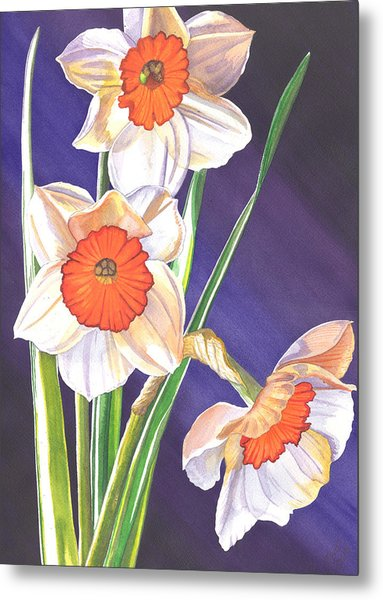 Three Jonquils Metal Print