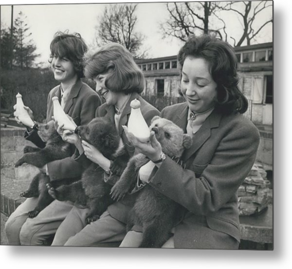 Three Little Bears Called Cilla, George And Ringo Metal Print by Retro Images Archive