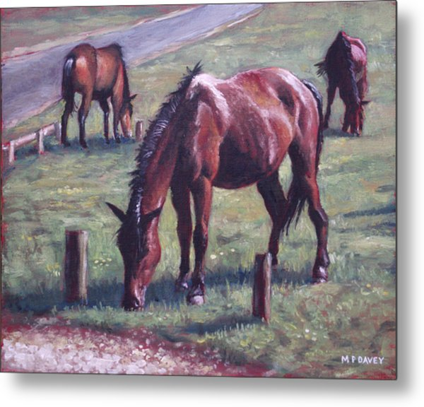 Three New Forest Horses On Grass Metal Print