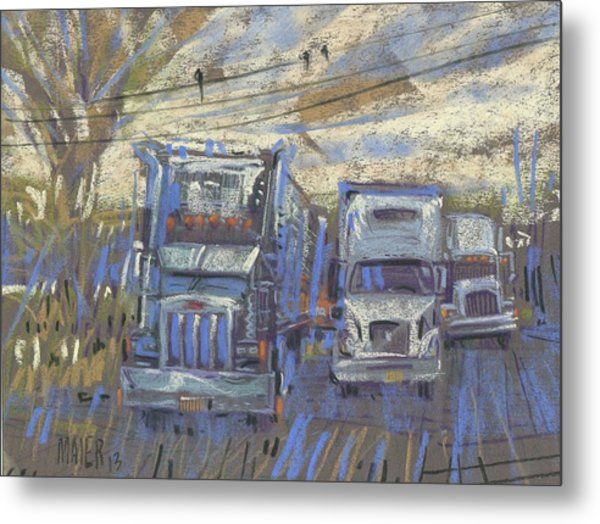 Three On A Wire Metal Print by Donald Maier