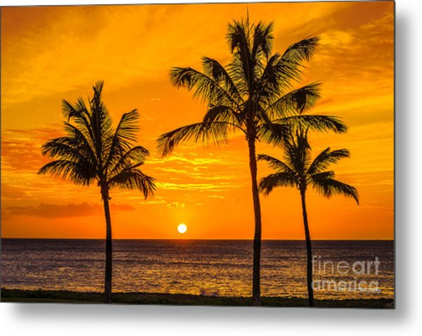Three Palms Golden Sunset In Hawaii Metal Print