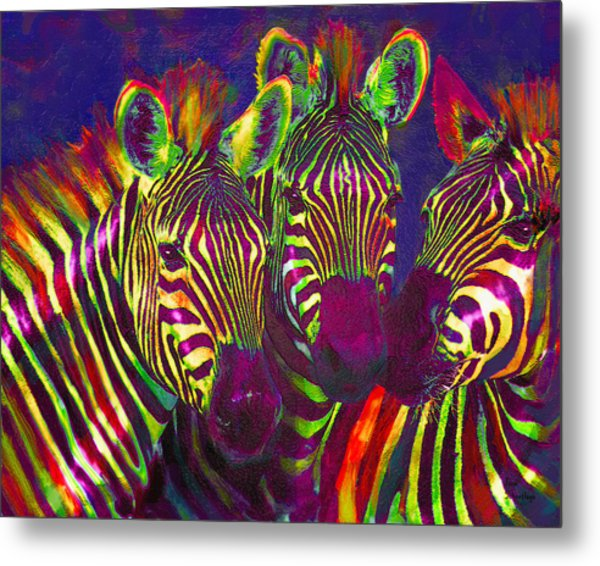 Three Rainbow Zebras Metal Print