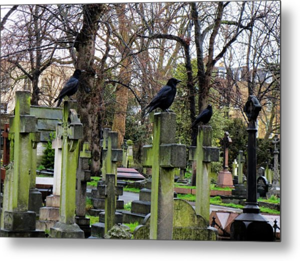 Three Ravens Metal Print