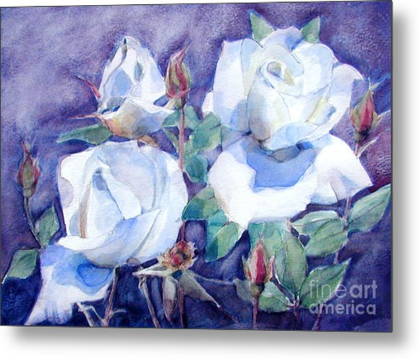 White Roses With Red Buds On Blue Field Metal Print
