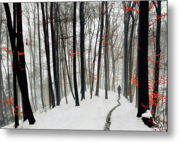 Through Autumn And Winter Metal Print