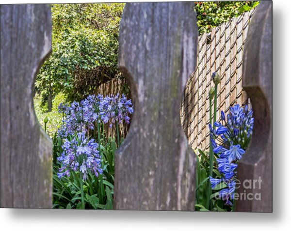 Metal Print featuring the photograph Through The Fence by Kate Brown