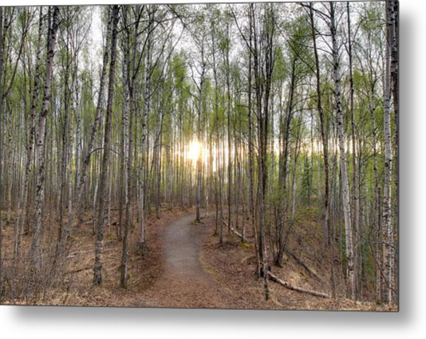 Thunderbird Trail Metal Print