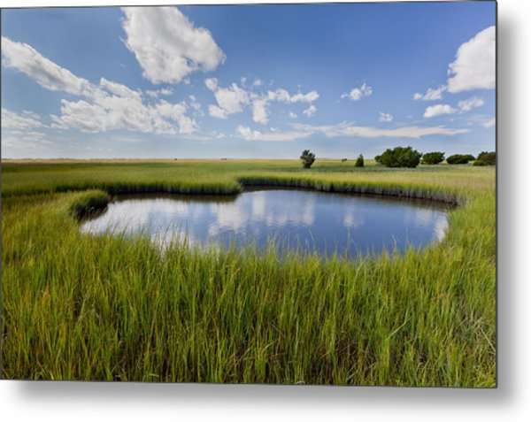 Tidal Pool Image Art Metal Print