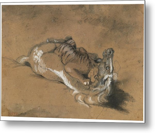 Tiger Attacking A Horse Metal Print