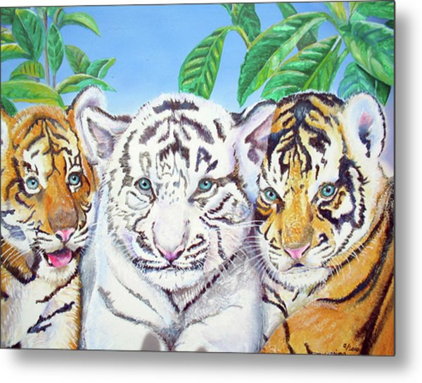 Tiger Cubs Metal Print