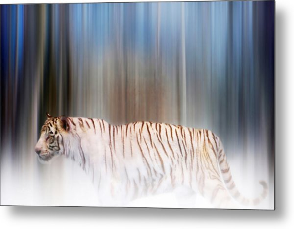 Tiger In The Mist Metal Print