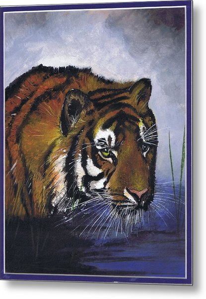 Tiger In The Water Metal Print