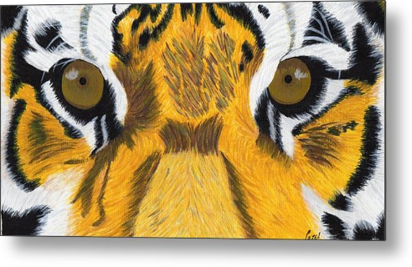 Tiger's Eyes Metal Print by Bav Patel