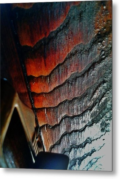 Tigerwood Metal Print by Jaime Neo
