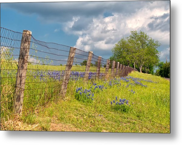 Tilted Fence Metal Print