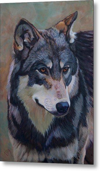 Timber Wolf _motomo Metal Print