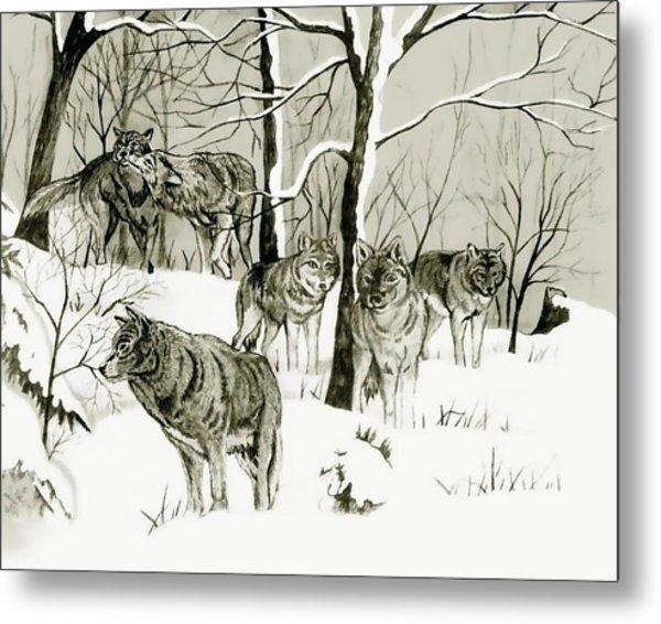 Timber Wolf Pack Metal Print