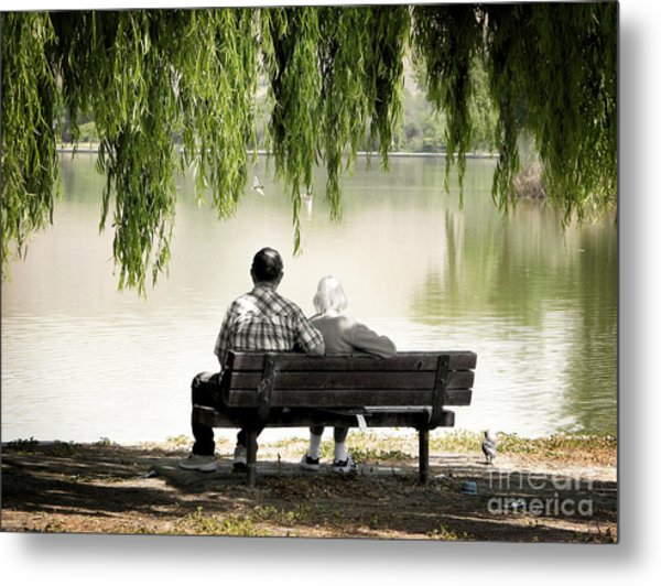 Time Flies By Metal Print