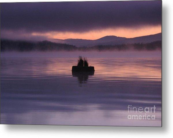 Timothy Lake Serenity Metal Print