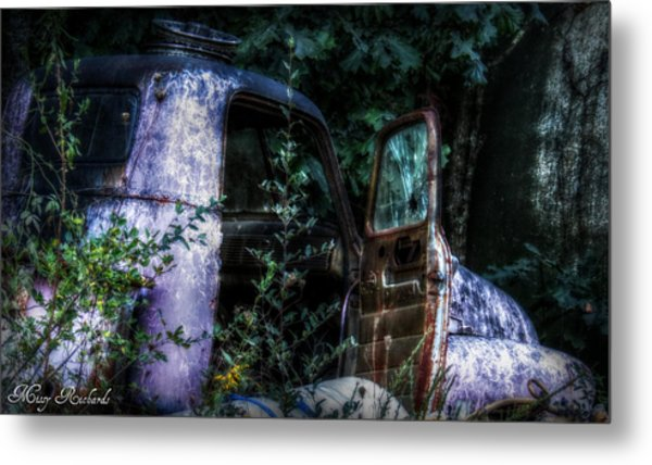 Tired Metal Print by Missy Richards