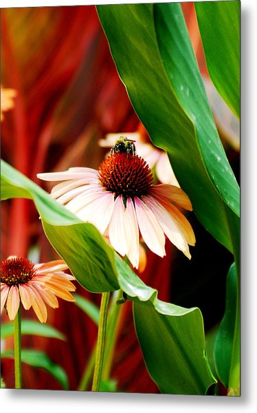 To Be A Bee Metal Print