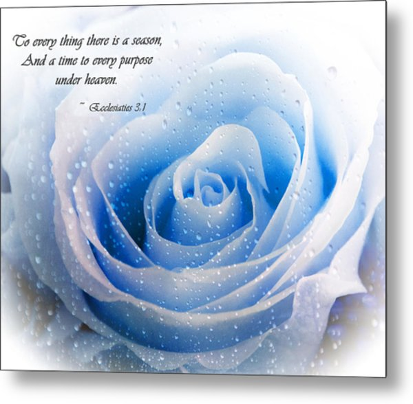 To Every Thing There Is A Season Metal Print