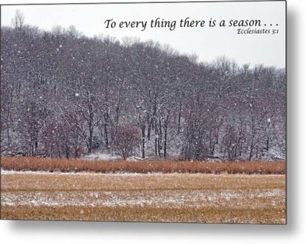 To Every Thing There Is A Season Metal Print by Nikolyn McDonald