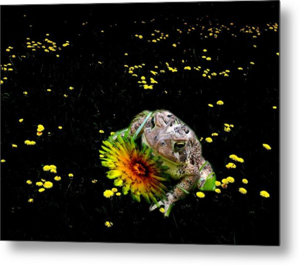 Toad In A Lions Den Metal Print