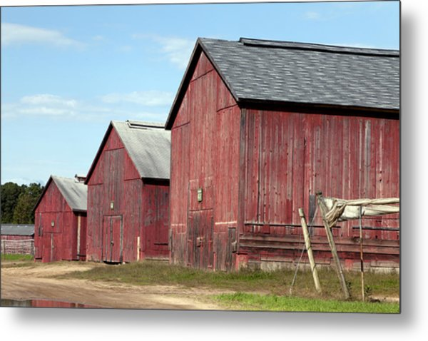 Tobacco Barns In Windsor Connecticut Metal Print
