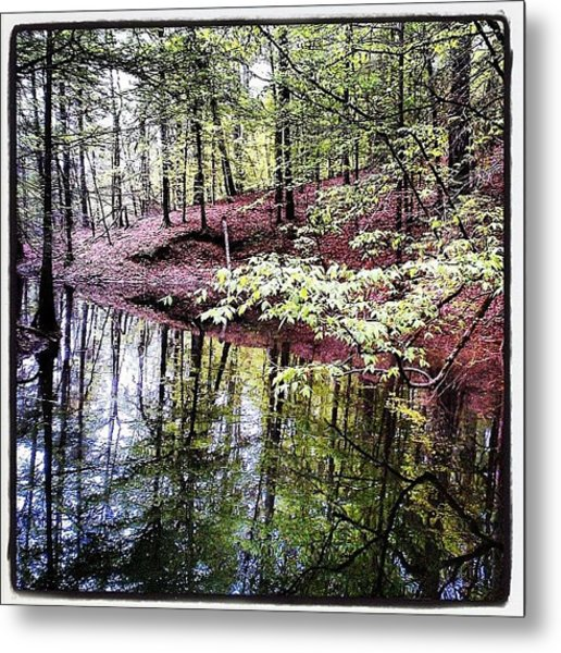 Toledo Bend Creek Metal Print