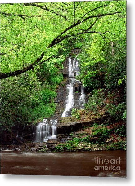 Tom Branch Falls 2009 Metal Print