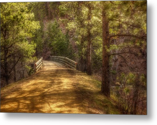 Top Of The Bridge Metal Print by Michele Richter