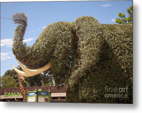 Topiary Elephant Metal Print