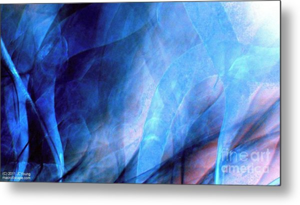 Tornado Alley Metal Print by JCYoung MacroXscape