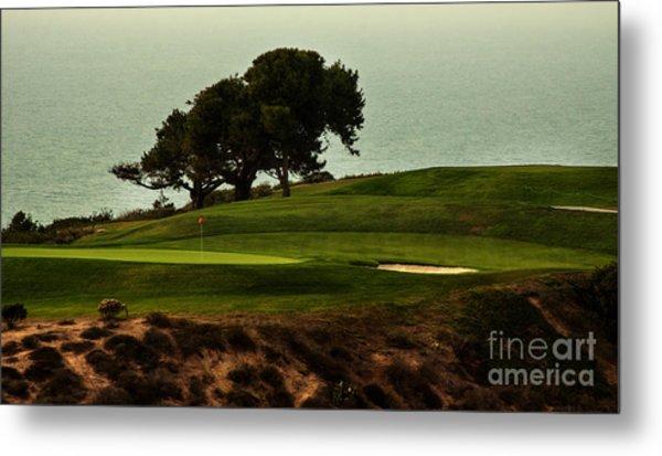 Torrey Pines Golfcourse Metal Print