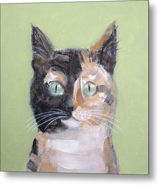 Tortie Cat Metal Print