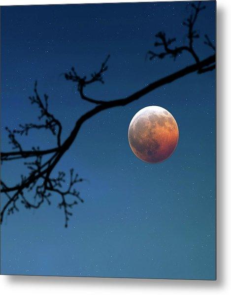Total Lunar Eclipse Metal Print